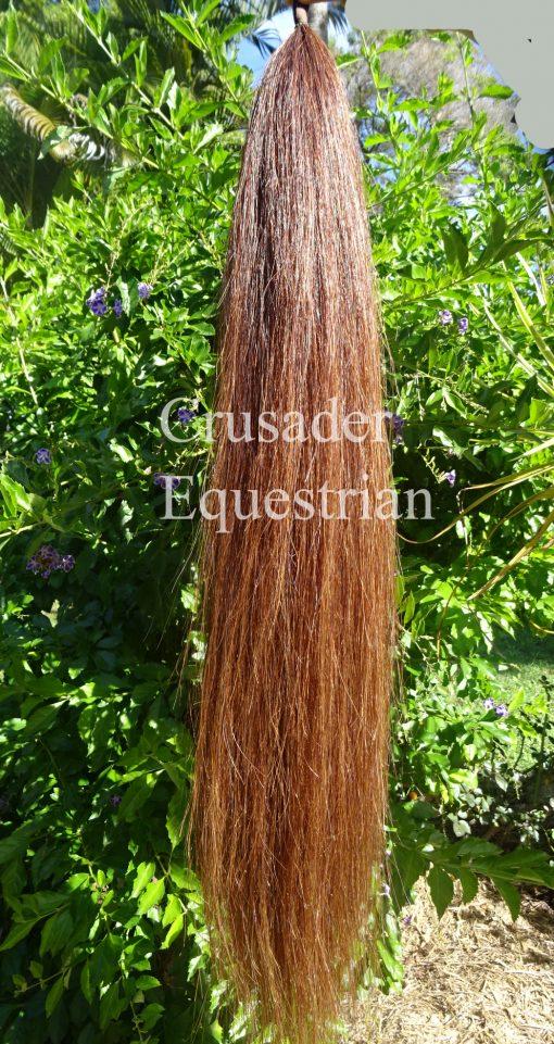 Chestnut A8