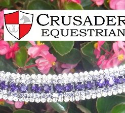 purple browband
