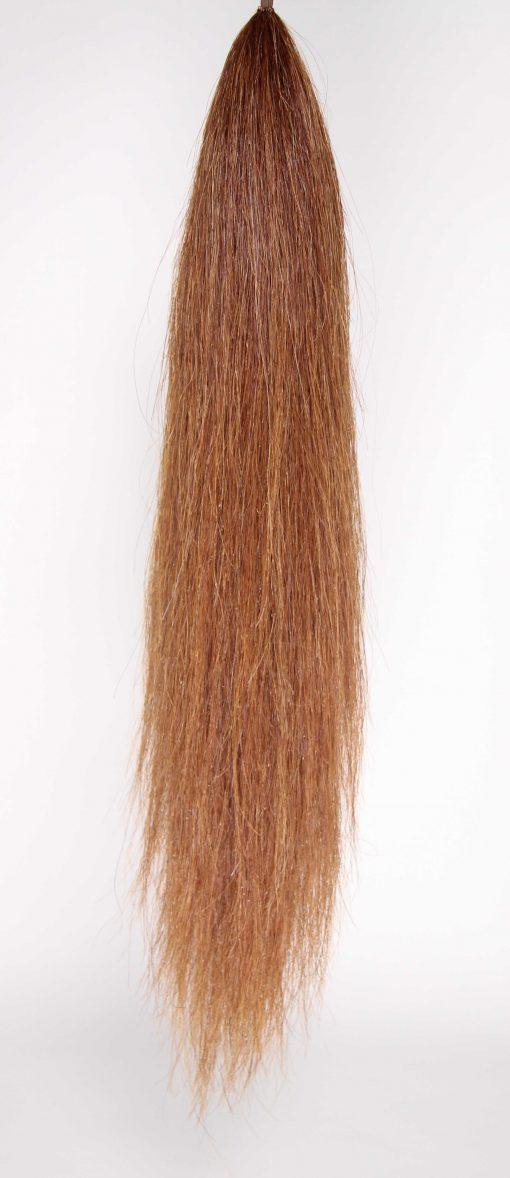 light chestnut tail