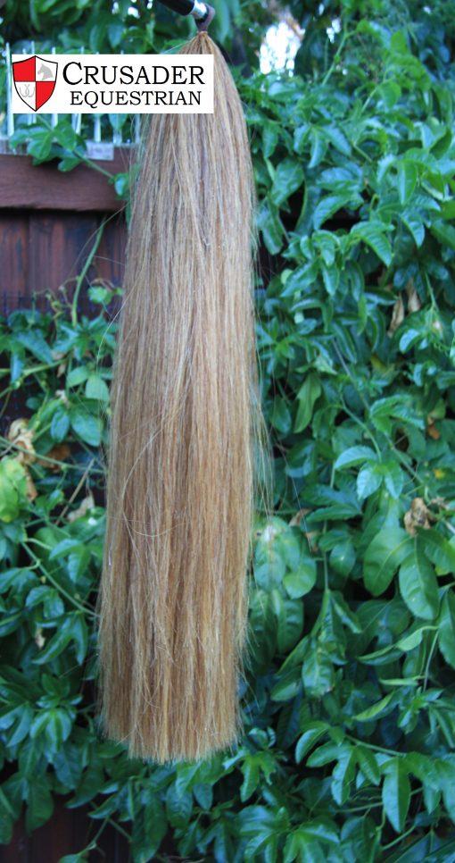Chestnut Cream Blunt tail