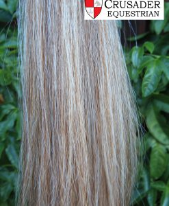 chestnut white blunt tail