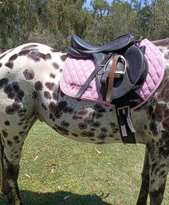 pink saddlepad