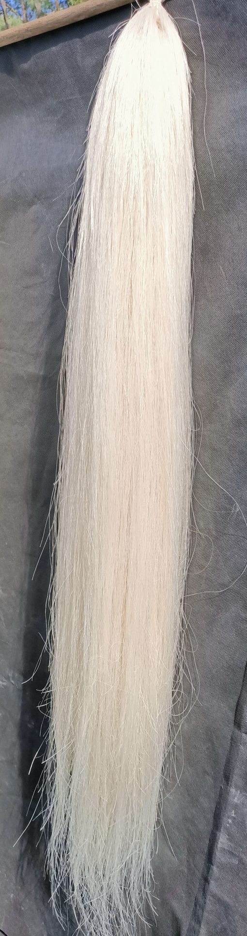 Pure White 9095 tail